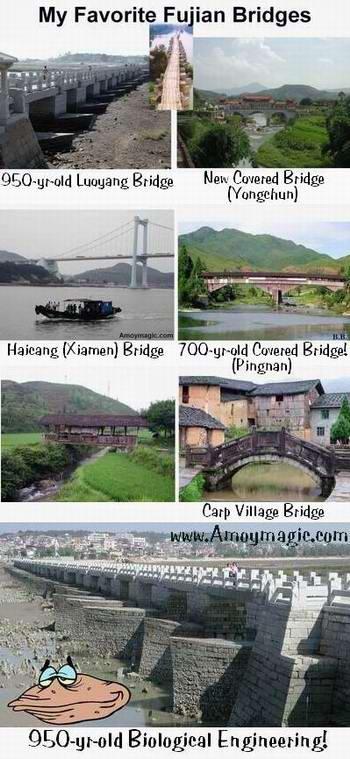 Bridges--i especially love fujian's wooden covered bridges, many