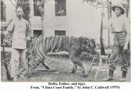 Photo of Father Caldwell, Dada, and the tiger he shot