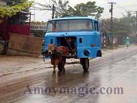One Cowpower Taxi